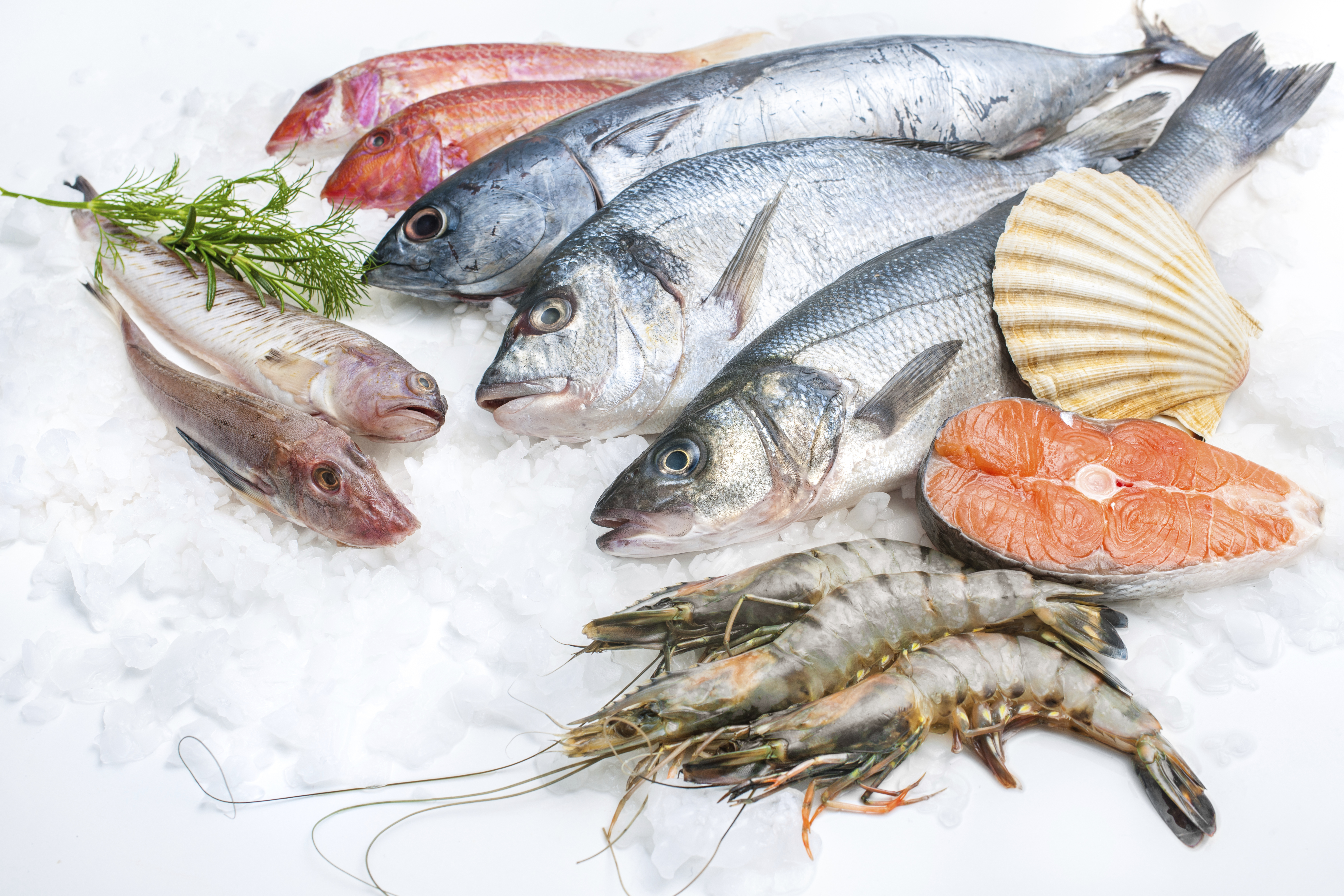 The health benefits of seafood basta pasta for Fish and seafood